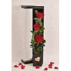 3枝進口玫瑰禮盒(3枝紅玫瑰,尤加利)