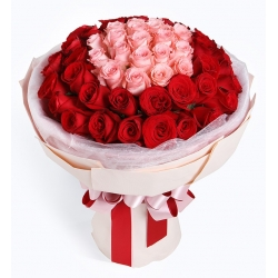粉玫瑰19枝 紅玫瑰31枝