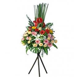 花店提供大量款式開張花籃,優惠價格,於指定吉時送花