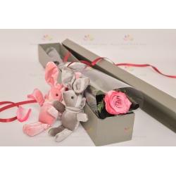 單枝紫色玫瑰花 - 只想和你在一起