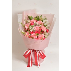 敬愛(8支粉康乃馨、紅粉小丁、白小百合、BB草)