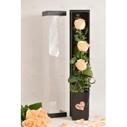 3枝進口玫瑰禮盒(3枝香檳玫瑰,尤加利)