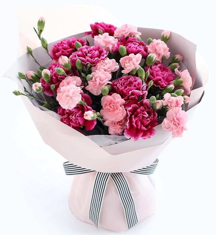 母愛 - 紫紅色康乃馨9枝,粉色多頭康乃馨10枝
