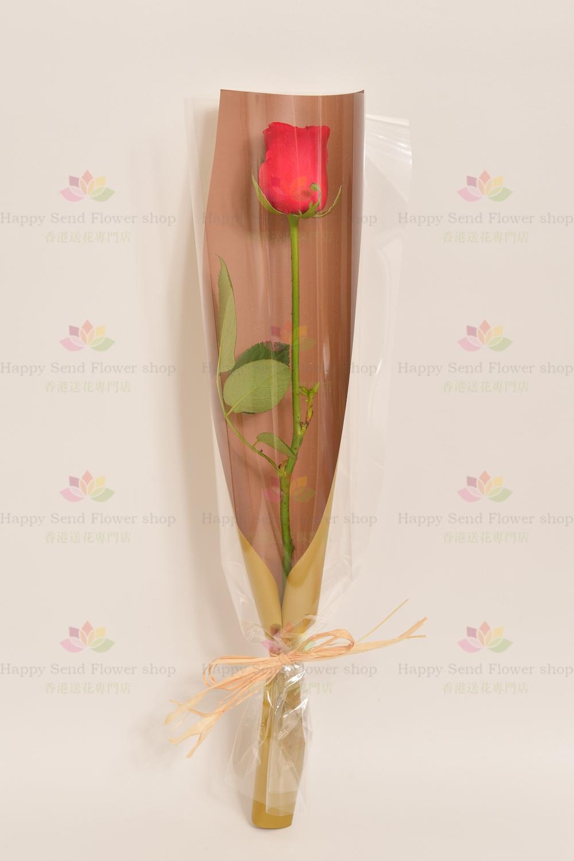 你是我的惟一(一枝紅玫瑰)