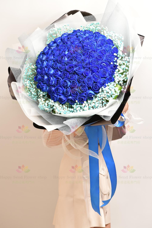 [至尊極緻罕有]荷蘭空運藍色99玫瑰