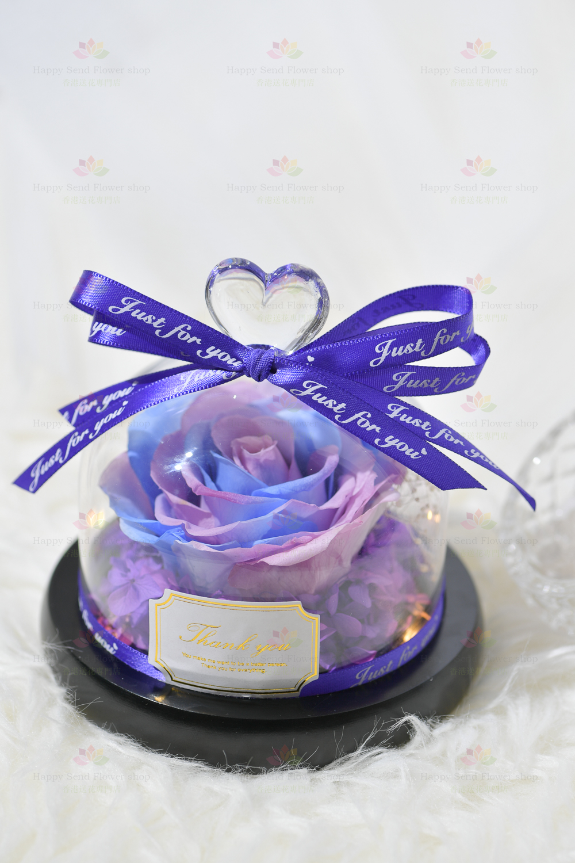 一心一意永生花玫瑰擺設(紫藍帶燈)(2021情人節花束系列)
